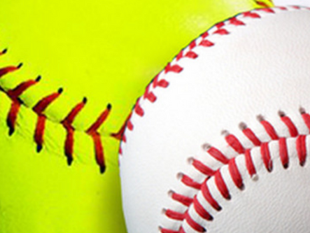 Bartow County LL 10U softball advances; Cartersville LL 10U baseball falls