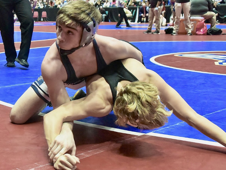 Woodland's Gollhofer named AJC Wrestling All-Classification Player of the Year