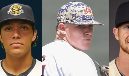 Athletes Beyond Bartow: Pro baseball update