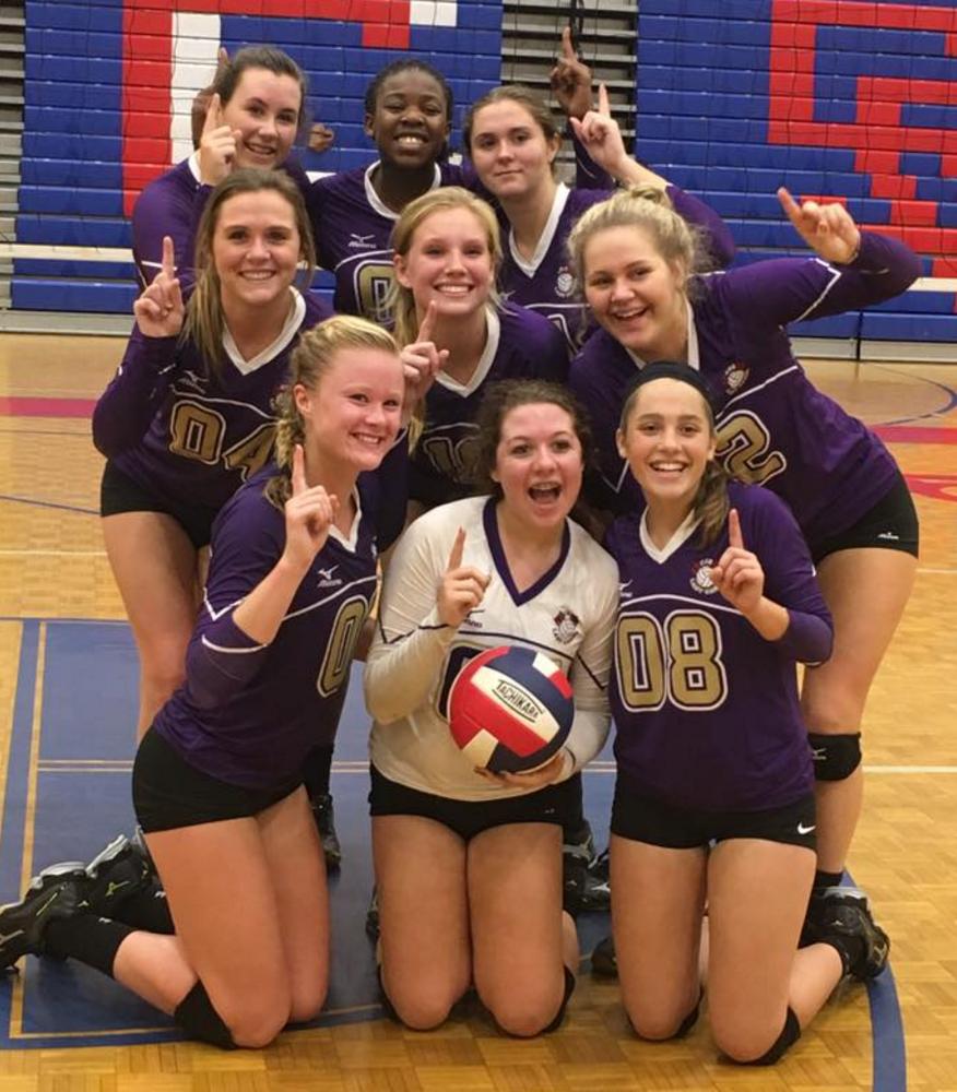 Cartersville volleyball, area champions, 2016