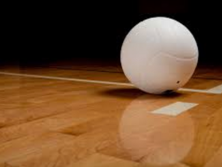 State volleyball playoffs: Cartersville, Adairsville fall in first round