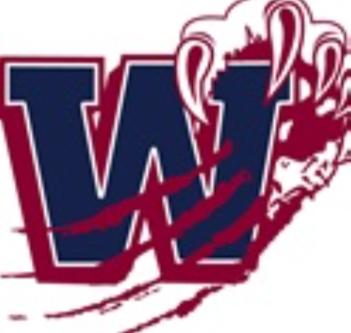 Woodland girls lose state playoff match at Riverwood