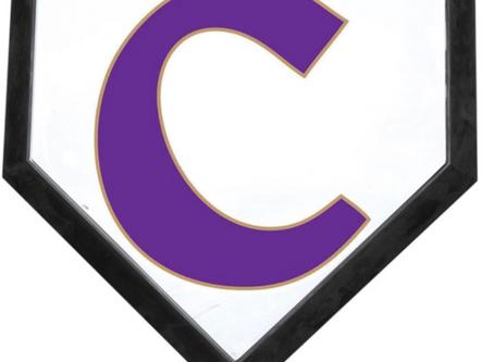 Canes' baseball hosting summer camps