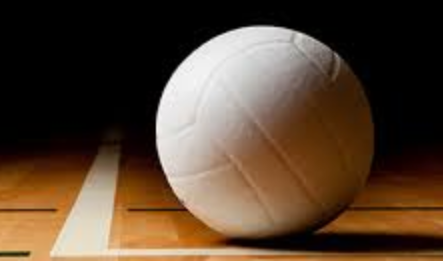 DTN announces 2019 All-Bartow County volleyball team