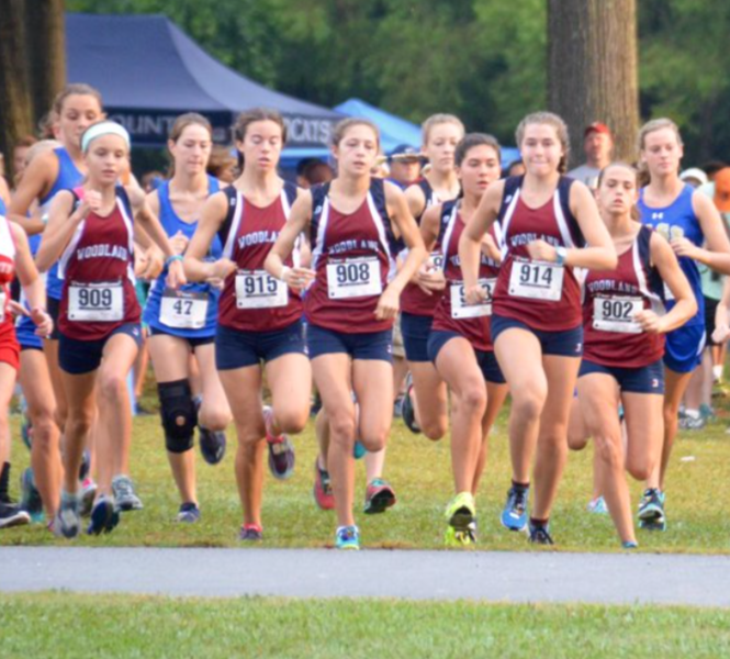 Woodland girls cross country