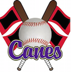 Cartersville Purple Hurricanes baseball