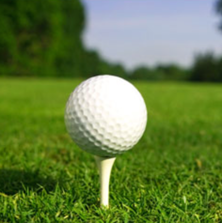 Scott Hamilton Golf Academy