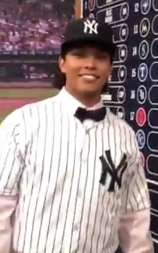 Anthony Seigler, NY Yankees organization