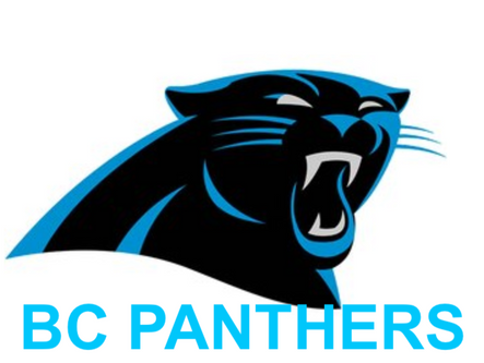 BC 9U Panthers move into state rankings; BC 12U Panthers win NWGYFL opener