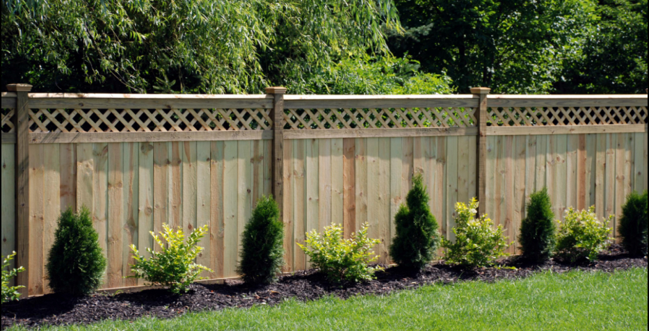 Fence Pressure Cleaning