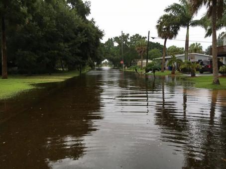 Hurricane Aftermath Safety