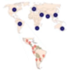 Advantage Market Intelligence global network.png