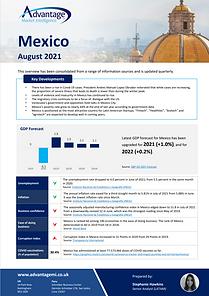 Mexico economic summary report August 2021