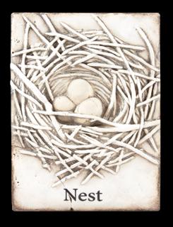 T370 Nest