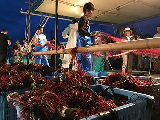 イセエビ漁