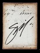 T315 Artist_s Signature