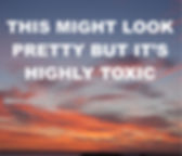 HIGHLY TOXIC.jpg