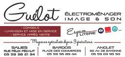 Encart-1.3_Guelot_2020.jpg