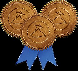 bronze_medals.png