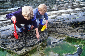 two children with plastic shovels by a rockpool