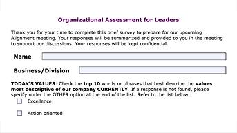 Organizational Assessment for Leaders