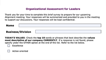 Organizational Assessment for Leaders