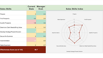 Sales Skills Assessment