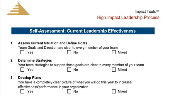 High Impact Leadership Process