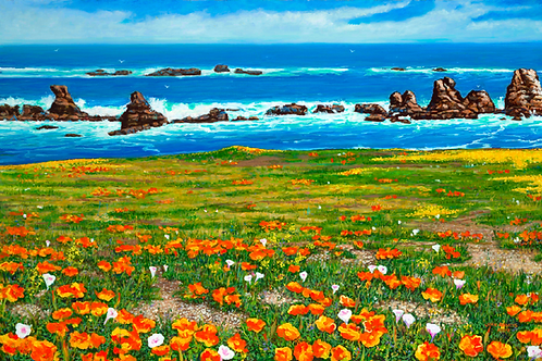 Pt. Buchon California poppy fields