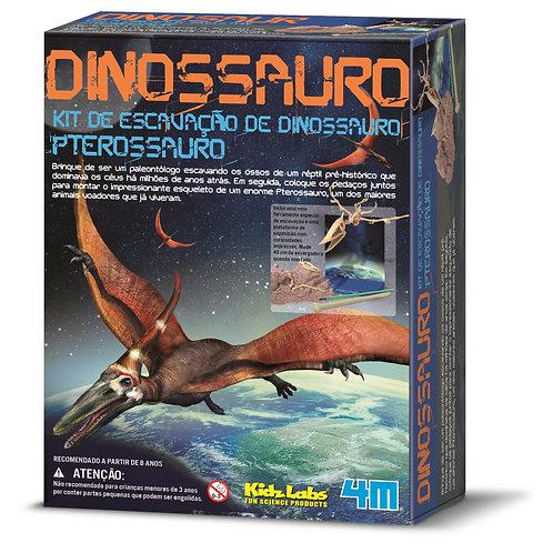 Kit de Escavação - Pterossauro