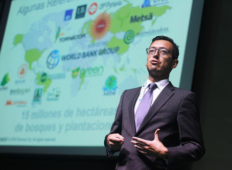 BI-ON: experiences and solutions for bioenergy investments