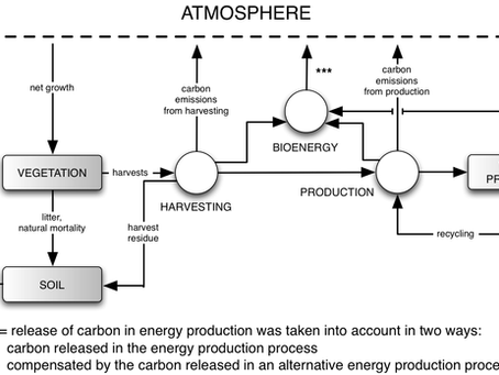 Experiences in Carbon Modelling