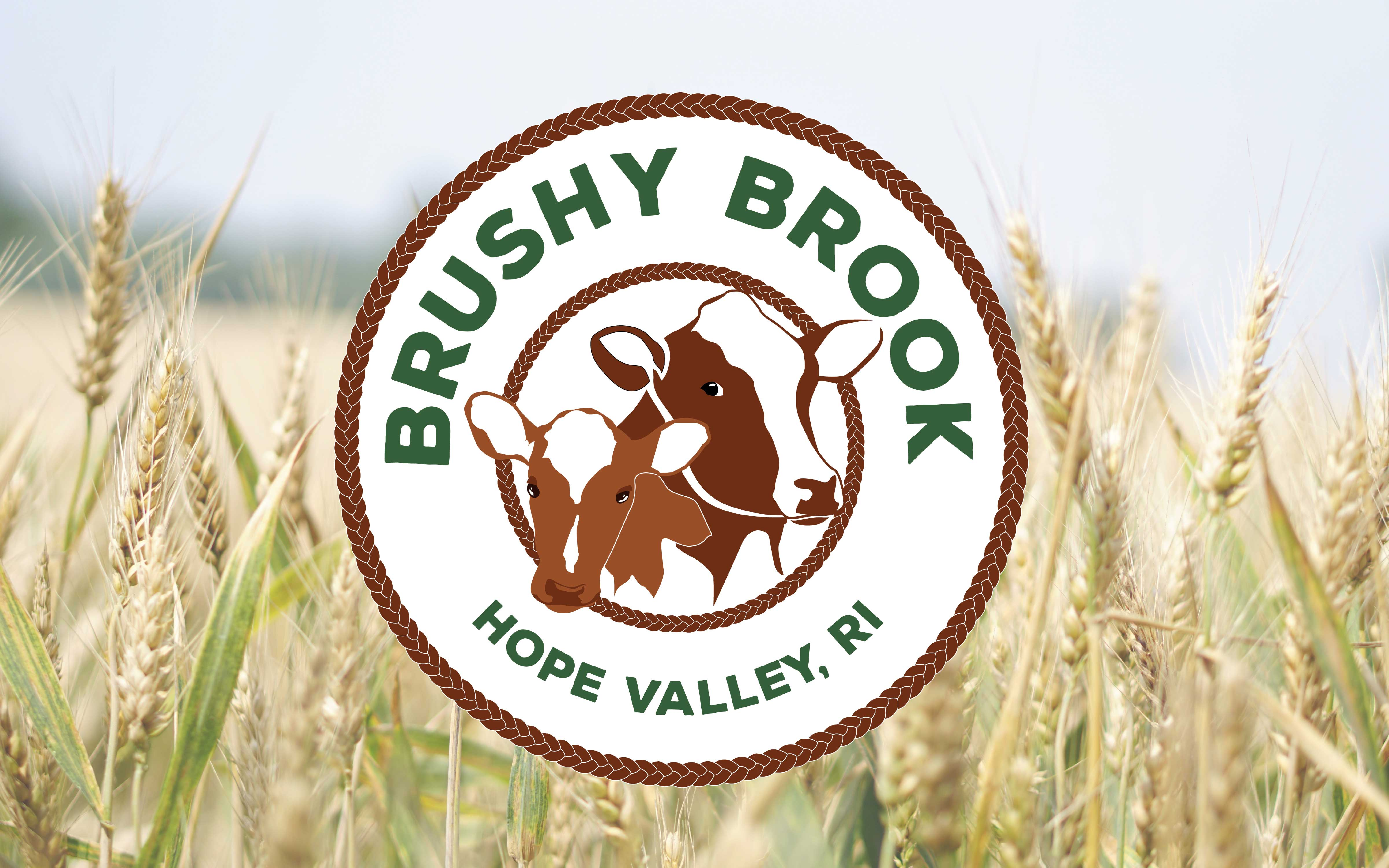 Brushy_Brook
