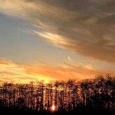 everglades-sunset-ar-annahita.jpg