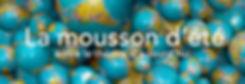 festival-de-la-mousson-d-ete-2.jpg
