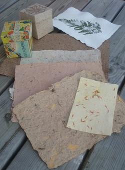 Papiers avec végétaux
