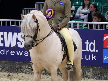 Nemesis 8th at HOYS