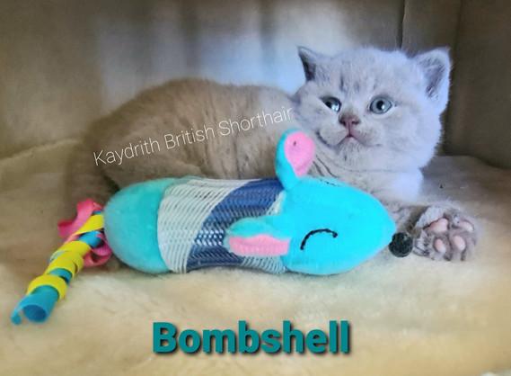 Kaydrith Bombshell