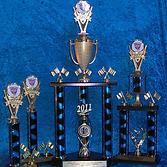 trophy_2.png