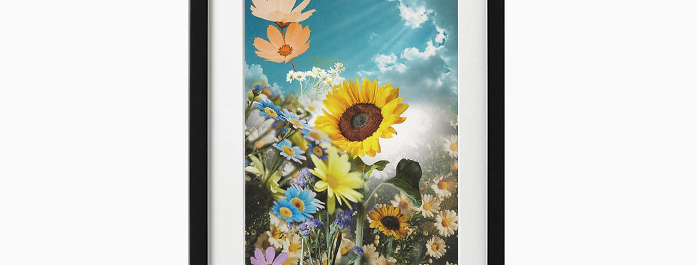 Sunflower Print - Wall Art
