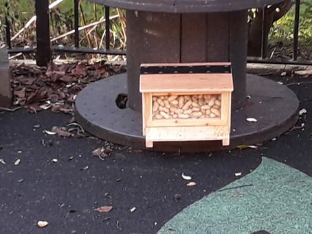 OL1y's Christmas Box