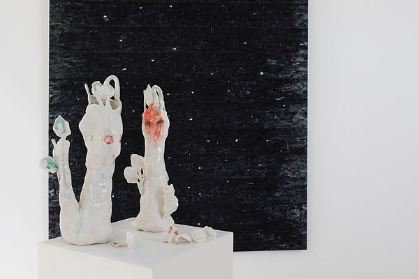 6.Galerie Vazieux_Dec 2020_17BD.jpg
