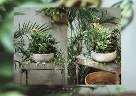 floral-04.jpg