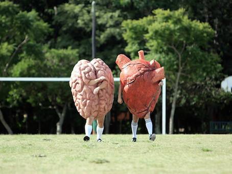 ¿Por qué está de moda la inteligencia emocional?