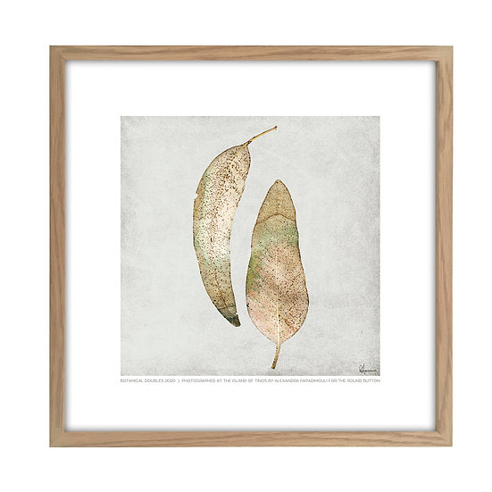 Framed Photo of a leaf from Tinos L02 - 20x20cm / oak