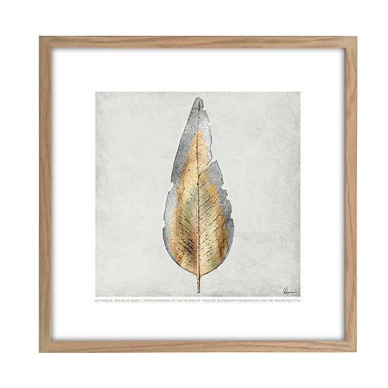 Framed Photo of a leaf from Tinos L01 - 20x20cm / oak