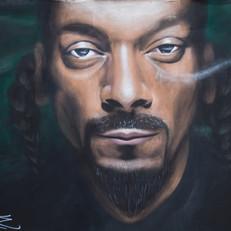 Snoop (2015)