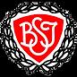 Brøndby_Strand_IK.png