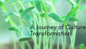 A Journey of Culture Transformation