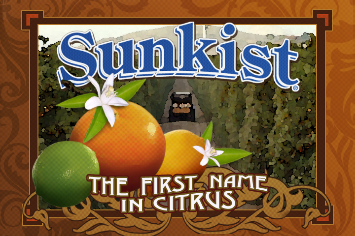 Sunkist Image Video